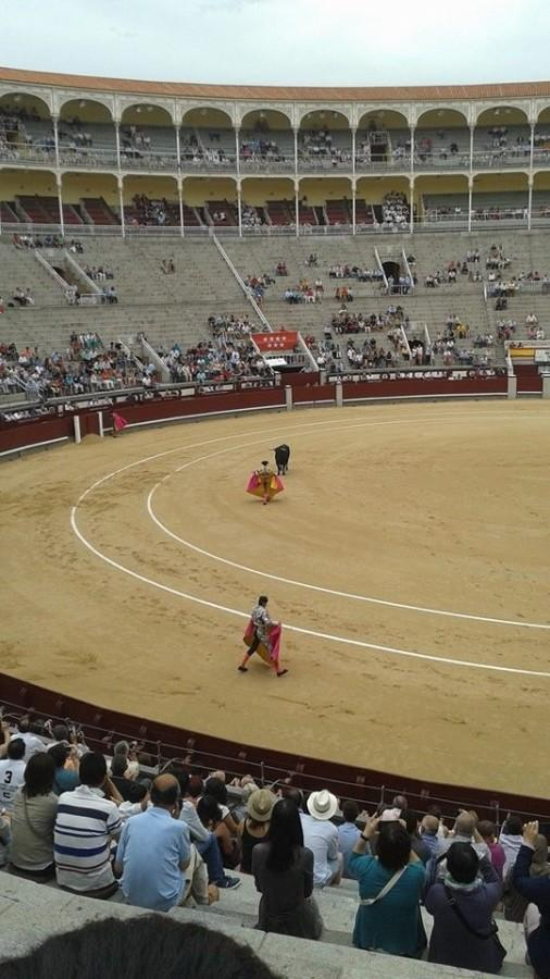 Some of the GATEway students decide to view the bullfight before deciding what they think of it.