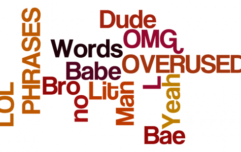 The Results: Which words or phrase do you most overuse?