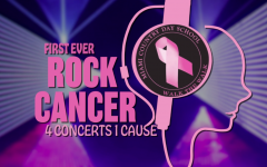 Rock Cancer Concert #3