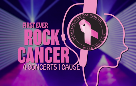 Rock Cancer Concert #3