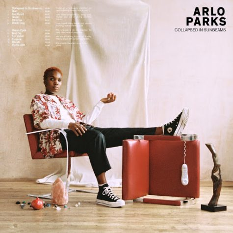 Finding Solace in Arlo Parks' Debut LP